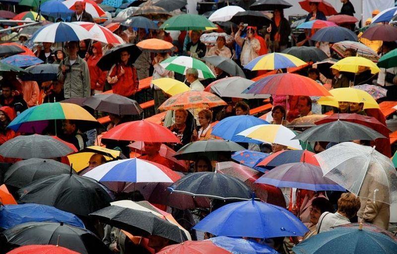 Как выбрать зонт женский правильно