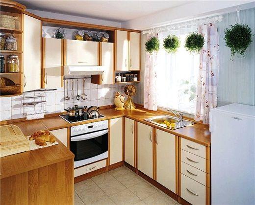 цветы для маленькой кухни
