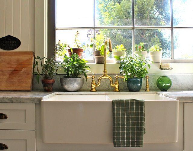 цветы в интерьере кухни в декоративных горшках