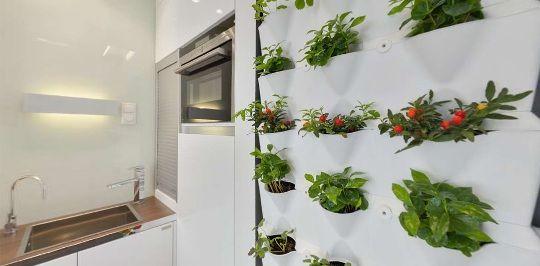 выращиваем травы на кухне не в ущерб интерьеру