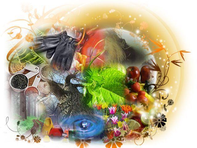 Сезонные различия при выборе духов