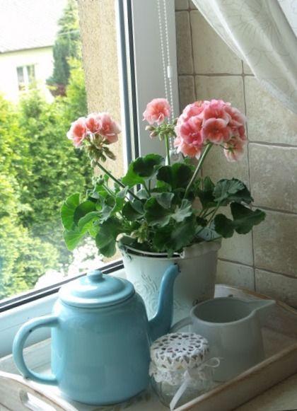 Декорируем подоконник цветами
