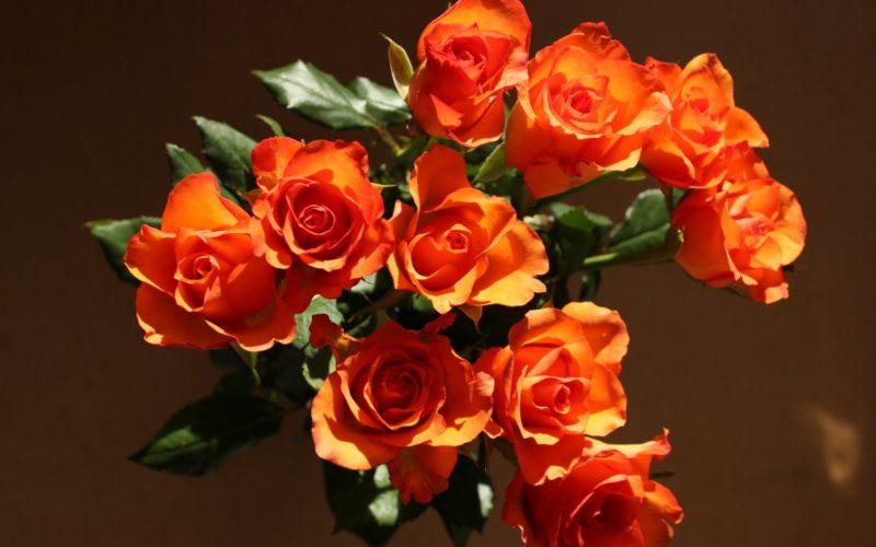Букеты из оранжевых цветов